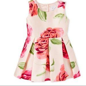 4T-Baby Girls' Sleeveless Pleated Dress, Rosebud
